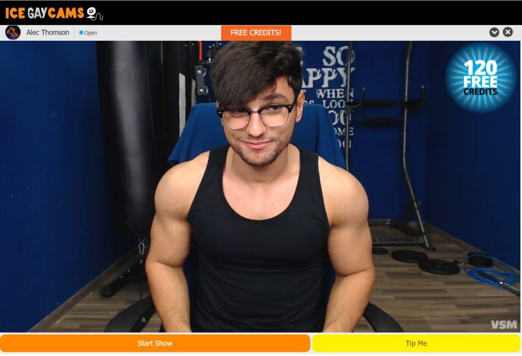 IceGayCams Review